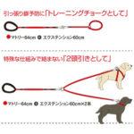 leash-11